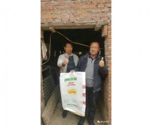 益生菌产品801——养肠道,猪健康